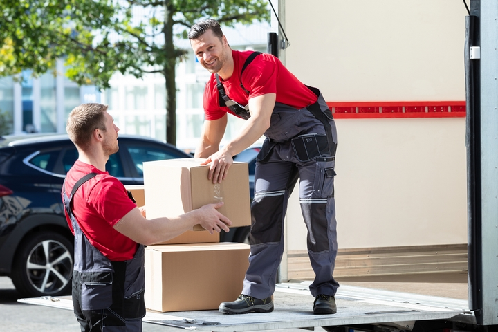 You should hire professional movers to help eliminate moving stress.